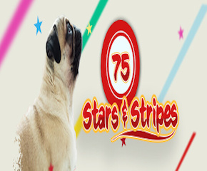 Play Stars And Stripes Bingo Game Online in UK