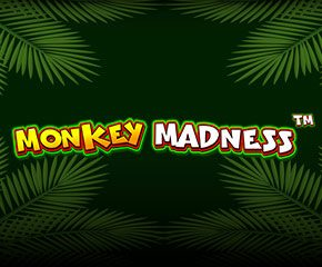 Play Online Slot Monkey Madness In UK
