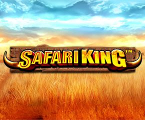 Play Online Slot Safari King Play Online Slot In UK