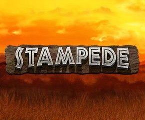 Play Online Slot Stampede In UK