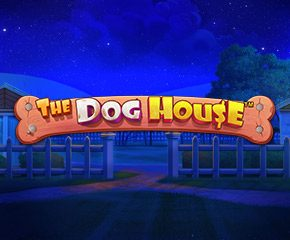 Best online slot in Uk- The Dog House