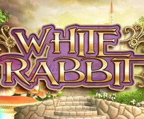 Play White Rabbit Slot At The Best Online Casino In UK